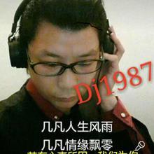 Dj1987 专业舞台演艺音响设备
